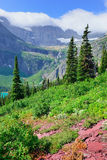 High alpine landscape on the Grinnell Glacier trail in Glacier national park, montana Royalty Free Stock Images