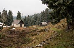 High alpine meadow in Julian Alps Stock Photography