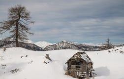 High alpine meadow Krstenica Stock Photo