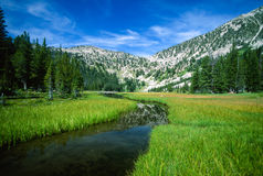 High Alpine Mountain Meadow and Stream. Beautiful wide angle landscape of the outlet of a high alpine mountain lake. Slow moving winding stream flows through the Royalty Free Stock Image