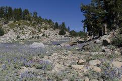 High Alpine Pass Stock Photo
