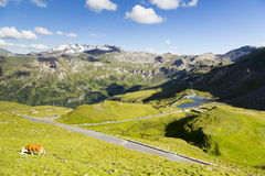 High alpine road Royalty Free Stock Photo
