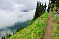 High alpine trail and heavy fog in glacier national park Royalty Free Stock Image