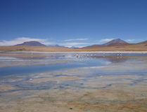High altiplano sulphuric lake in bolivia Royalty Free Stock Photos
