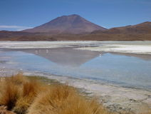 High altiplano sulphuric lake in bolivia Stock Image