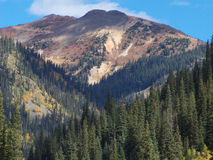 High Altitude Beauty. Rock, trees and sky in the Colorado Rocky Mountains royalty free stock image