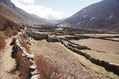 High altitude farm. Fields separated by rock walls, farm house and white mountain peak in distance Stock Photos