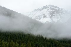 High-altitude forest and snowy mountains of Jasper National Park Stock Image