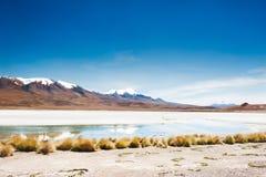 High-altitude lagoon and volcano, Altiplano, Bolivia Royalty Free Stock Photo
