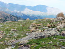 High Altitude Tundra. High altitude during Fall in the Rocky Mountains royalty free stock photo