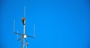 High altitude worker working on a cellphone mast Royalty Free Stock Photo