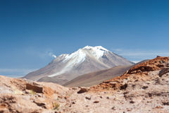 HIgh Andean Landscape Royalty Free Stock Images
