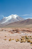 HIgh Andean Landscape Stock Image