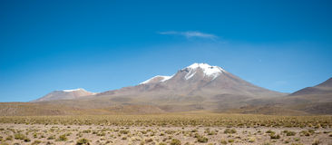 HIgh Andean Landscape Royalty Free Stock Photography