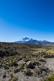 High Andean tundra landscape in the mountains of the Andes. royalty free stock photography
