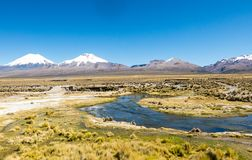 High Andean tundra landscape in the mountains of the Andes. The weather Andean Highlands Puna grassland ecoregion, of the montane grasslands and shrublands stock photos