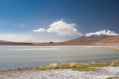 High Andes Lake, Bolivia Royalty Free Stock Image