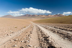 High Andes Road Stock Photography