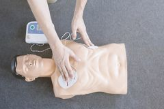 High angle of medical mannequin royalty free stock photo