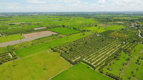 High angle photo showing Thai farming area. Which is the main occupation of most Thais Stock Photo
