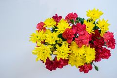 High Angle photography of yellow chrysanthemum and pink carnatio. N bouquet on white background Stock Image