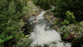High Angle of a Powerful Flowing Forest River stock video