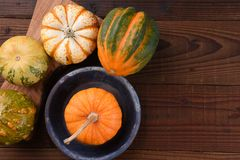 High angle shot of a group of ornamental pumpkins and gourds royalty free stock photography