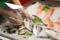 High Angle Still Life of Variety of Raw Fresh Fish Chilling on B. Ed of Cold Ice in Seafood Market Stall,Fresh seafood on ice in the showcase,Salmon on cooled Royalty Free Stock Photography