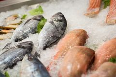 High Angle Still Life of Variety of Raw Fresh Fish Chilling on B. Ed of Cold Ice in Seafood Market Stall,Fresh seafood on ice in the showcase,Salmon on cooled Royalty Free Stock Images