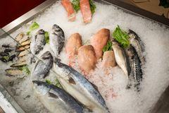 High Angle Still Life of Variety of Raw Fresh Fish Chilling on B. Ed of Cold Ice in Seafood Market Stall,Fresh seafood on ice in the showcase,Salmon on cooled Stock Image