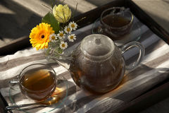 High angle view of a cup of tea and a teapot set with a flower vase on a tray Royalty Free Stock Photo