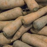 High angle view of dusty carrots royalty free stock image
