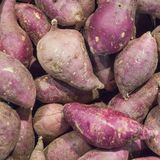 High angle view of dusty sweet potatoes stock image