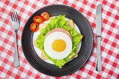 Egg sandwich served on the dining table. High angle view of egg sandwich served on the dining table. Concept of healthy breakfast Royalty Free Stock Photos