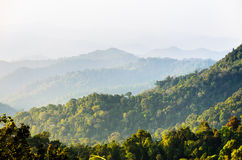 High angle view forest mountain and sky Royalty Free Stock Photos
