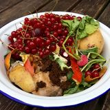High angle view of fresh organic rubbish with red currants in a small white bowl for recycling Stock Images