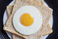Fried egg and wheat breads on the plate. High angle view of fried egg and wheat breads served on the plate. Concept of healthy breakfast Royalty Free Stock Photography