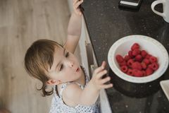 Reaching for Some Fruit. High angle view of a little girl standning in a kicthen and reaching up over the kitchen counter to grab some raspberries stock photos