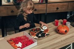 High angle view of little kid arranging halloween cookies on plate. At home royalty free stock images