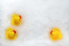 Free High Angle View Of Yellow Rubber Duck In Bath Swimming In Foam Water. Yellow Rubber Ducklings In Soapy Foam Royalty Free Stock Image - 181543876