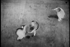 High angle view of referee watching boxers fight in ring stock footage