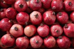 Pomegranates Packed in Shipping Crate Royalty Free Stock Photo