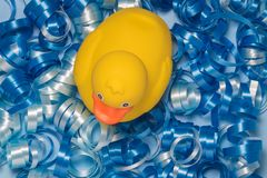 High angle view of rubber duck on blue decorative tape pieces. Flat lay of yellow duck toy on blue ribbons in form of water surface minimal concept Royalty Free Stock Images
