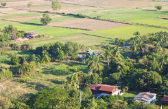 High angle view of rural areas. View of the rural areas where rice farming in Thailand Royalty Free Stock Photos