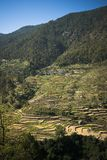 High angle view of small village with terraced field, Uttarkashi Stock Photo