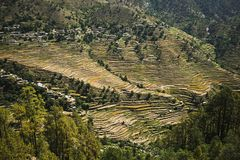 High angle view of small village with terraced field, Uttarkashi Stock Photography