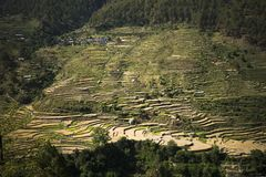 High angle view of small village with terraced field, Uttarkashi Royalty Free Stock Image