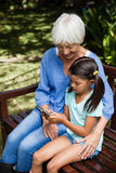 High angle view of smiling grandmother looking at granddaughter using mobile phone on wooden bench. At backyard Royalty Free Stock Photos