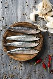 Raw sardines on a rustic wooden table. High angle view of some raw sardines in a boxwood plate placed on a gray rustic wooden table sprinkled with peppercorns Stock Photography