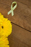 High angle view of spotted green Lymphoma Awareness ribbon with yellow gerbera flowers Royalty Free Stock Images
